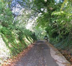 Nine Acre Lane, looking north. 306