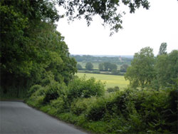 The view to Blackmoor church. 702