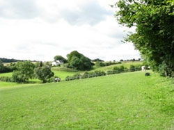 Galley Hill seen from the Kings Field 767