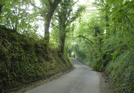 Honey Lane climbs away out of the village towards Blackmoor and Oakhanger. 733
