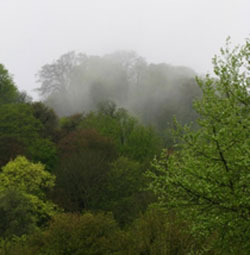 Mist rising from the Zig Zag Path, seen from Barnfield. 4190