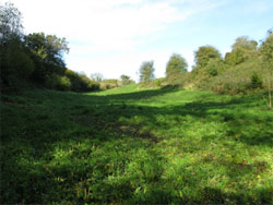 Looking north up the Rifle Range. 233