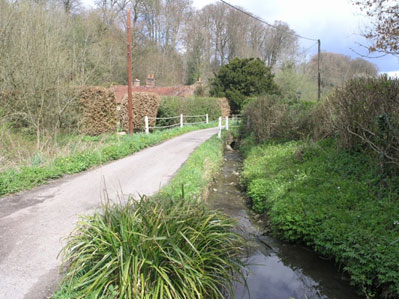 The Wellhead stream at the bottom of Hucker's Lane. It merges with Seale stream to become Oakhanger stream by being piped under the lane at Dortons. 144