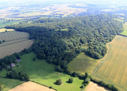 Westcroft is the only cultivated field on the southern edge of the Common. 114